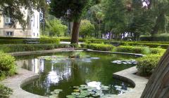 Parque Nova Sintra